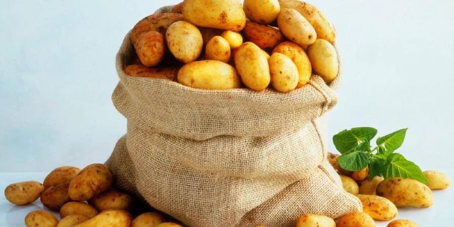 Is Eating Potatoes Raw Healthy or Harmful?