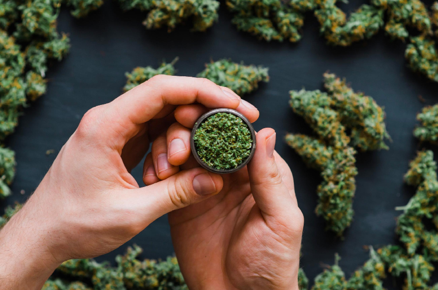 WHICH IS THE RIGHT MEDICAL MARIJUANA STRAIN FOR YOU?